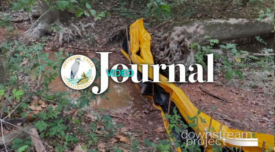 Video Journal: Specks Run Initial Site Visit