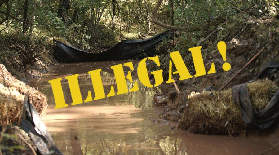 Video Journal: Intro to Illegal Dumping in Specks Run