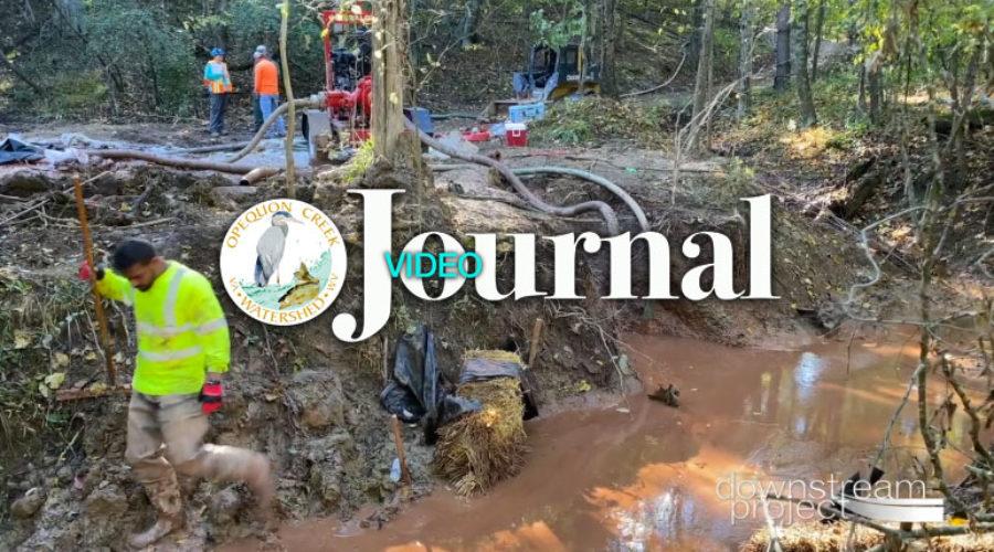 Video Journal: Specks Run Cleanup Monitoring